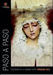 paso-a-paso-2016